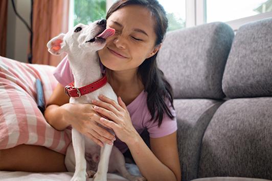 dog licking girl