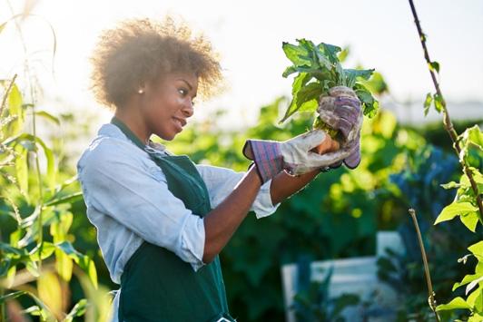 woman farming
