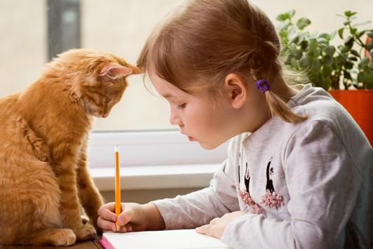 kitten watching young girl do homework