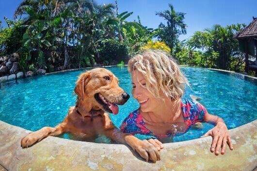 Cool-Dog-And-Mom