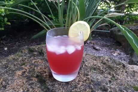 Superfruit Mocktail