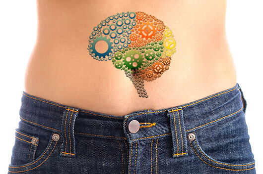 gut-second-brain