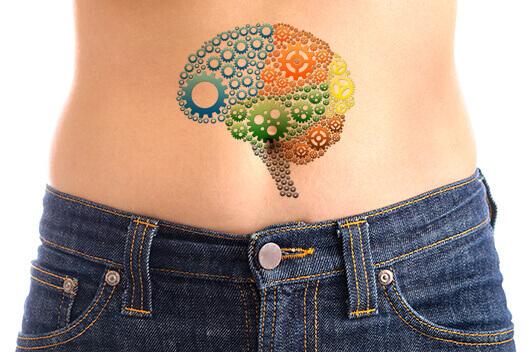 gut-second-brain