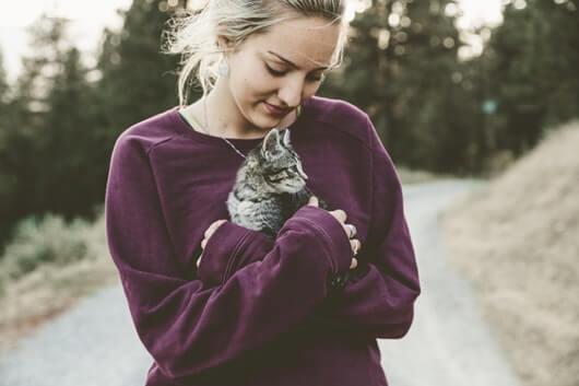 kitty-cuddle