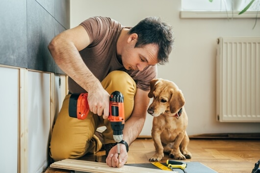 pet-friendly-DIY-tips