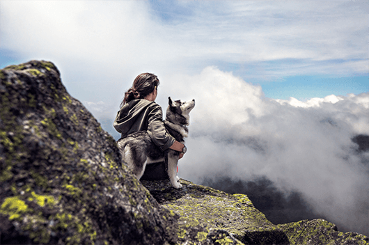 veteran-and-husky