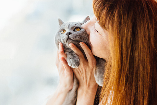 Woman Kisses Gray Cat